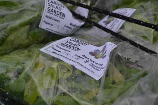 Cardiff salad garden 2