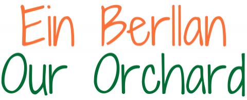 Ein Berllan – Our Orchard