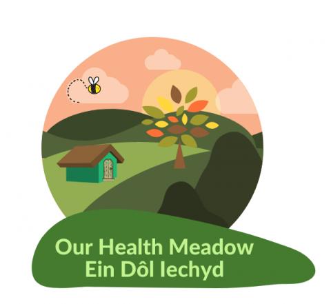 Our Health Meadow – Ein Dôl Iechyd